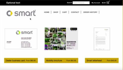 Private store portals large accounts